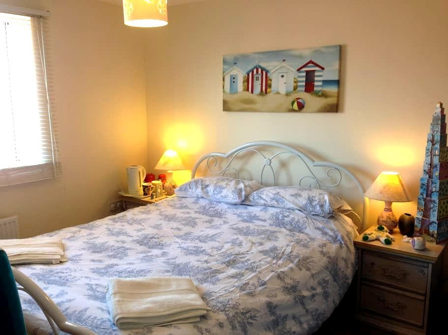 Spacious en-suite double room in great location. - Exeter - Stadswoning