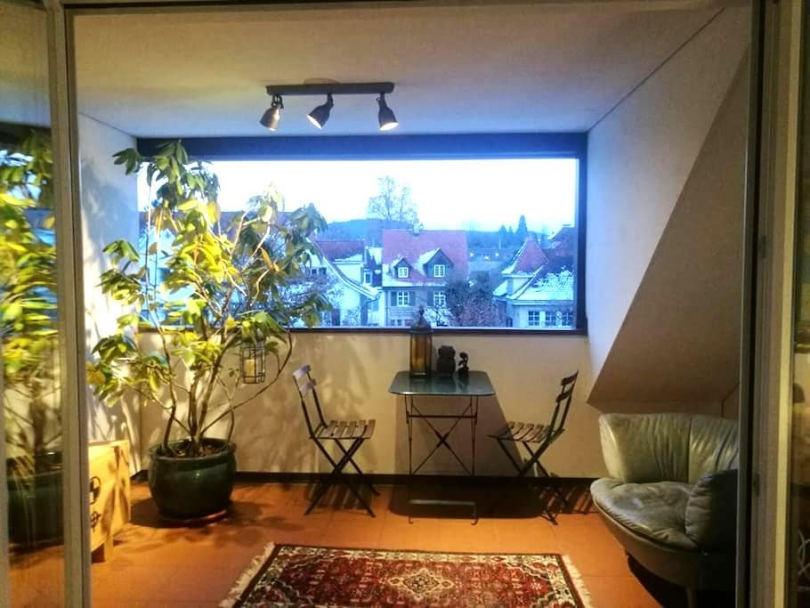 Bright 3,5 rooms rooftop appartment - Riehen - Apartament
