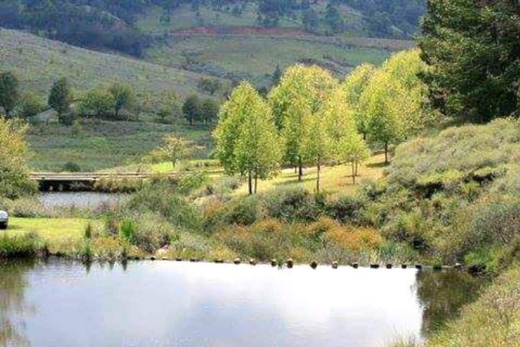 Shooters Hill, Walkerson's Estate - Dullstroom - 一軒家