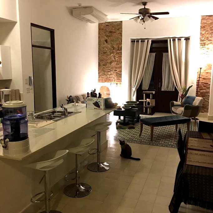 Luxury apartment in the heart of Casco Antiguo - San Felipe