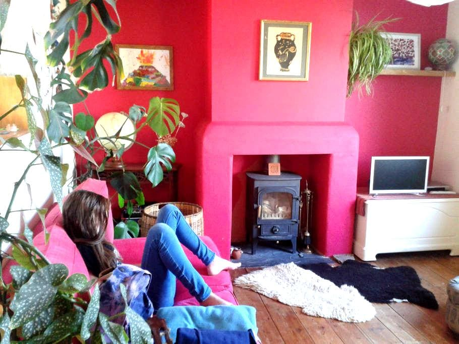 Colourful family home - Chagford - Huis