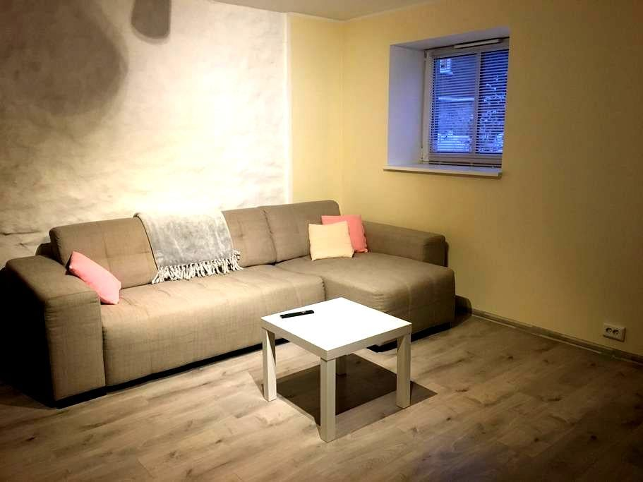 Very good location, newly renovated city apartment - 塔林 - 公寓