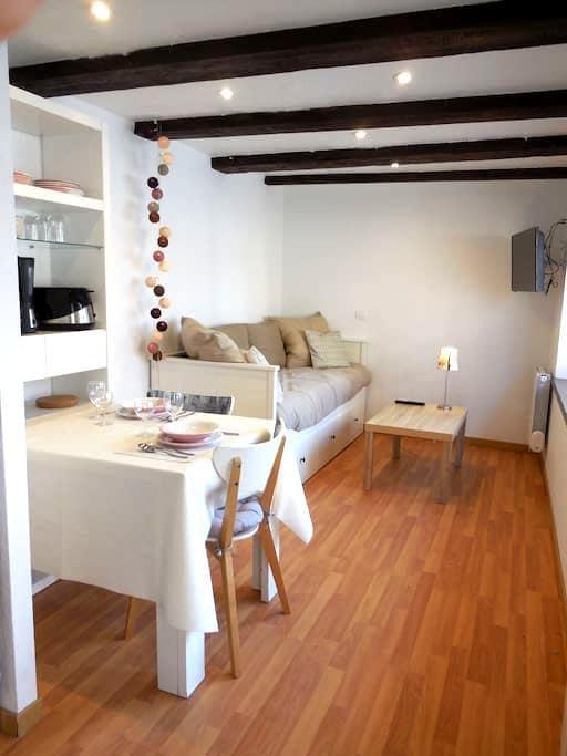 Studio centre Alsace entre Strasbourg et Colmar - 埃普菲 (Epfig) - 公寓