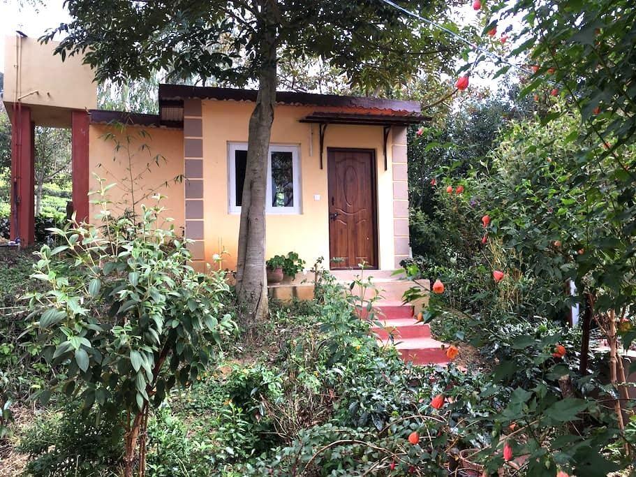 Fuschia, Single Cabin - Kotagiri