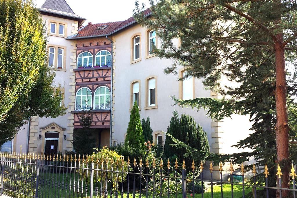 First floor of a nice duplex - Metz - Apartament