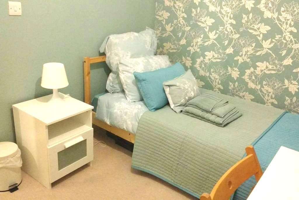 Lovely large single room in Manor Park - London - Lägenhet