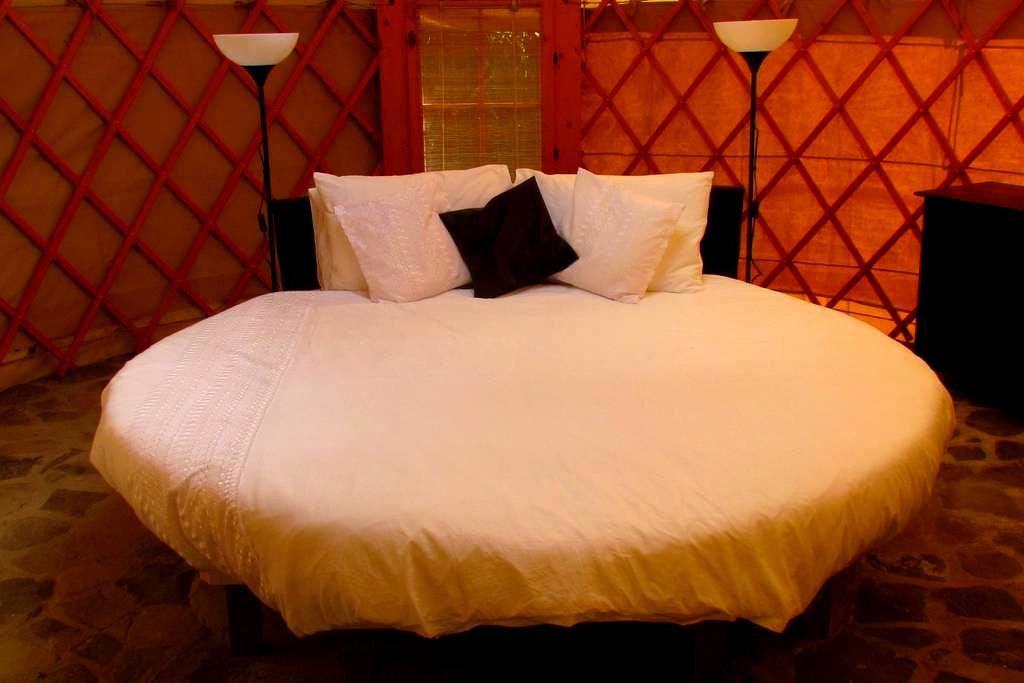 'Moon' Yurt at Mermaid's Secret - Nr Rosalie - Jurte