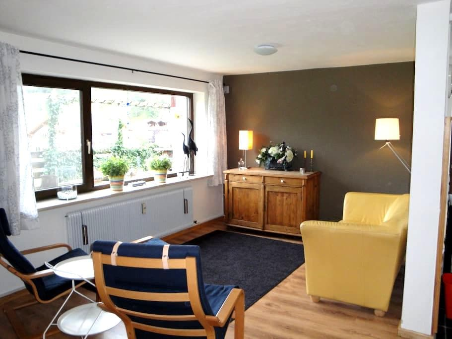 Ruim appartement vlakbij Almbahn. - Ehrwald - Apartment