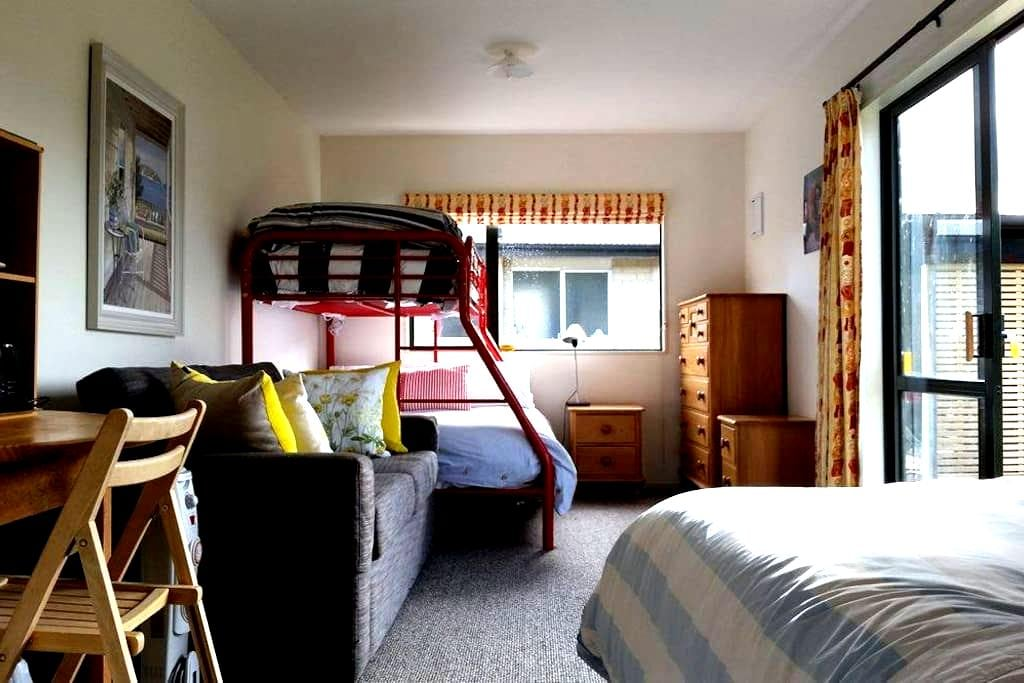 Cosy Studio Close to Town - Wanaka - Diğer