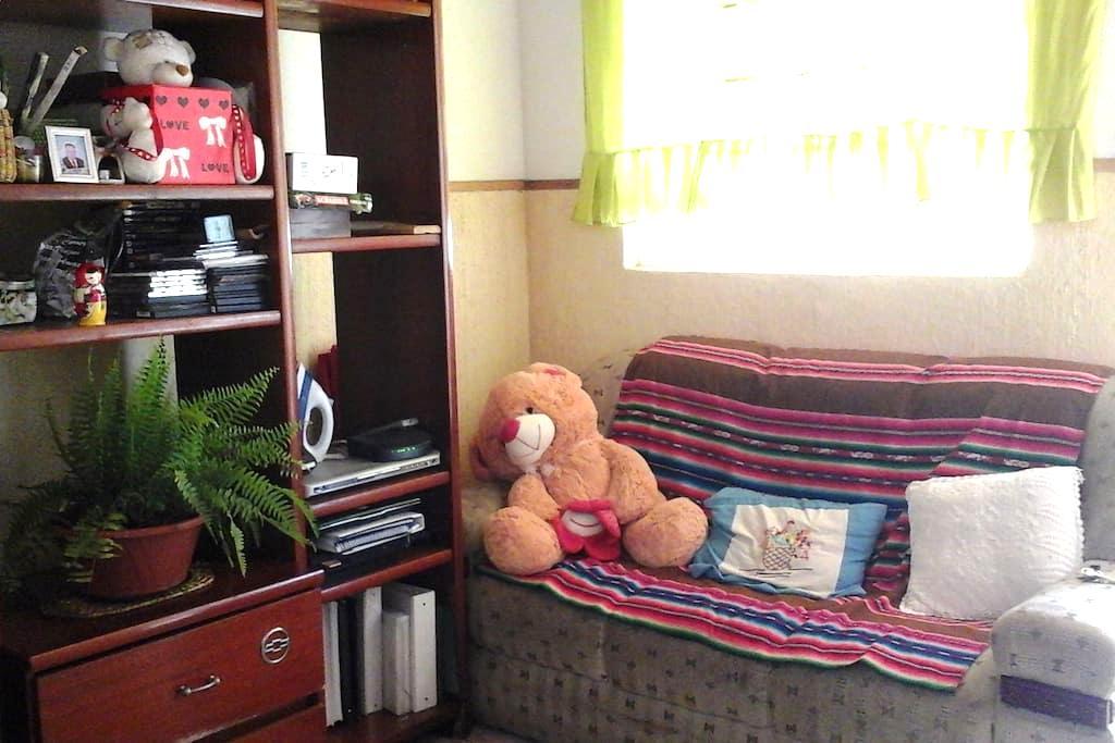 sofa cama e vaga para carro em Barao Geraldo - Кампинас