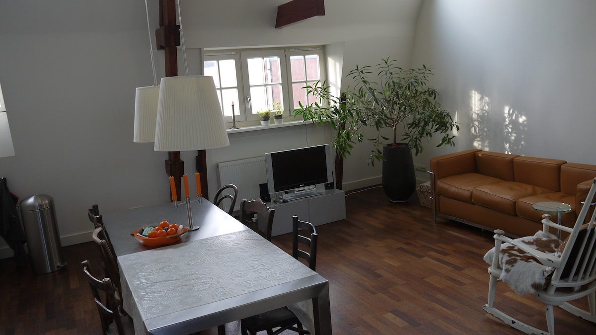 Lovely appartment close to Jordaan