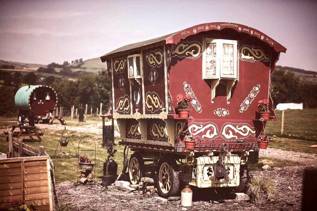 Gypsy caravan weekend break rhayader powys - Nantmel