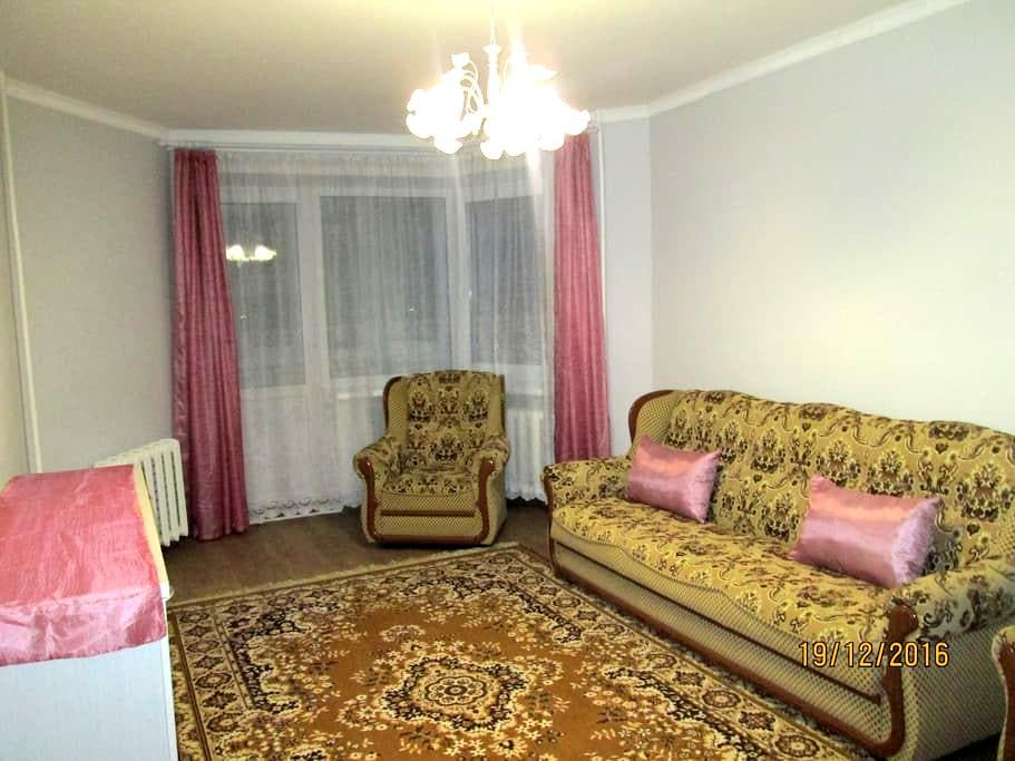 Newly renovated flat - Appartement