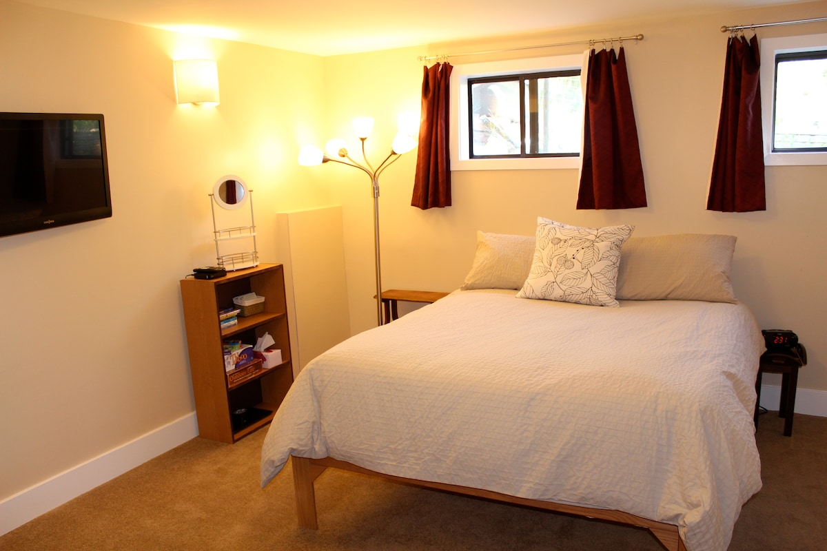Spacious bedroom with flat screen tv and comfortable queen bed