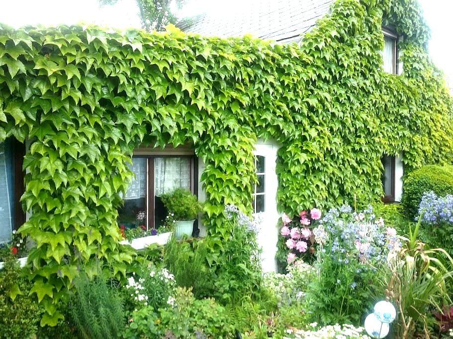 Kleines Ferienhaus in Liebengrün - Liebengrün