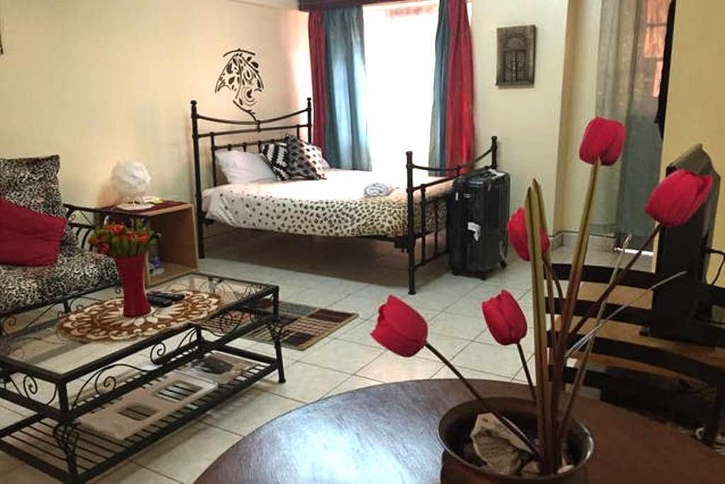 NEW!!STUDIO HERI - affordable - Nairobi - Apartmen