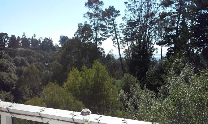 Lovely Oakland Hills Inlaw