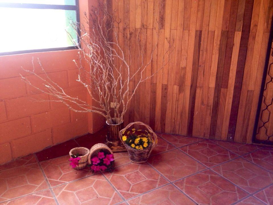 Rainforest CRC Bed&Breakfast