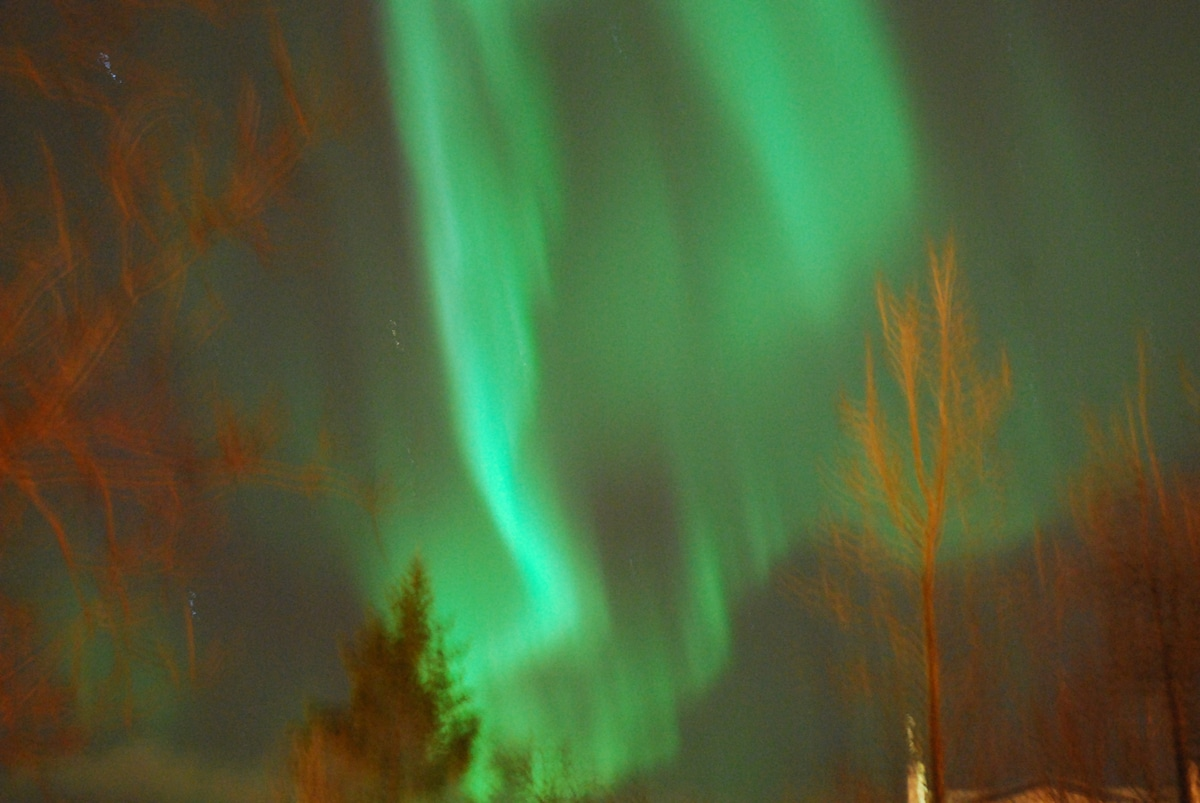 This picture of the northern lights was taken from our garden
