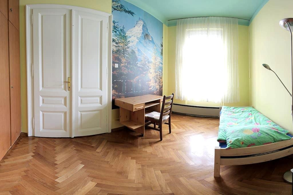Spacious rooms in the best location - Ljubljana - Flat