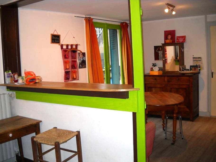 Bords de Loire du calme et de la convivialité - Ingrandes - Apartemen
