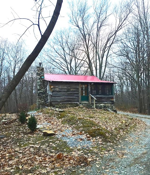 Cozy Cabin in the Woods- 55 mi from NYC - Holmes - Cabin