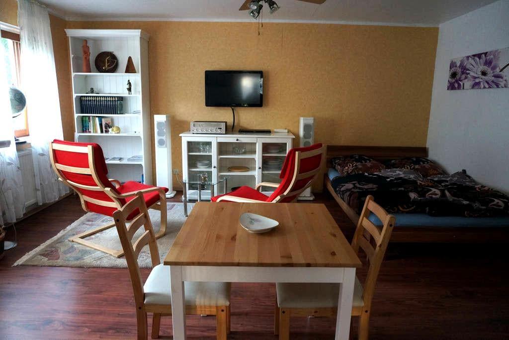 1-Zimmer Apartment Bad, sep. Küche, - Au