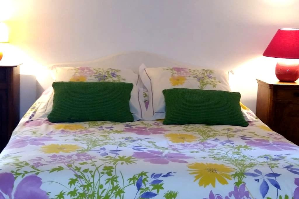 Charming room with suite. Car park - Carcassonne - House