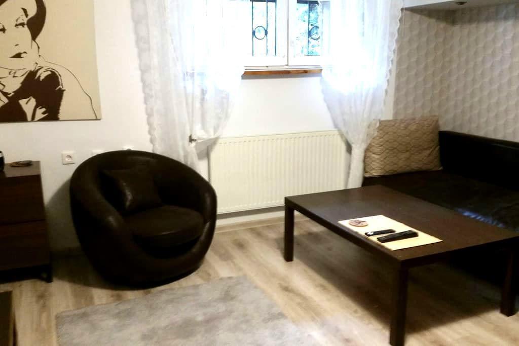 Pokój do wynajęcia w osobnej części - Poznań - Dom