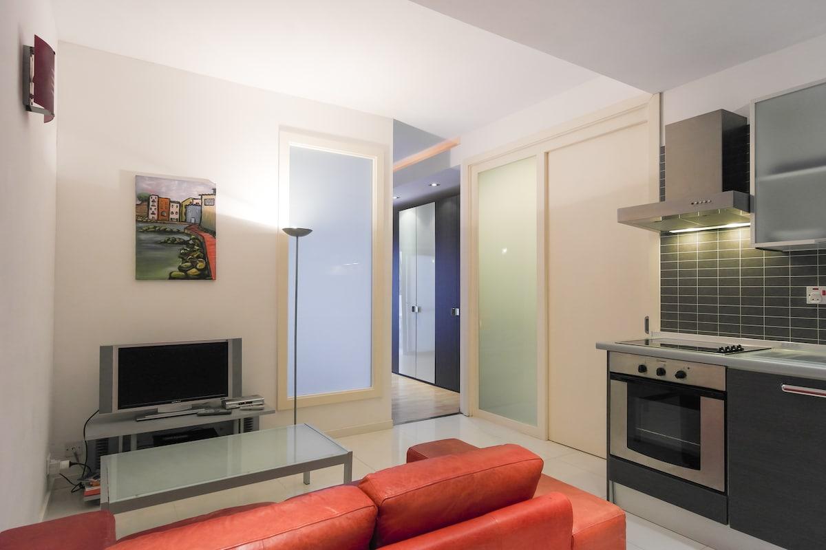 Designer Finished Apartment