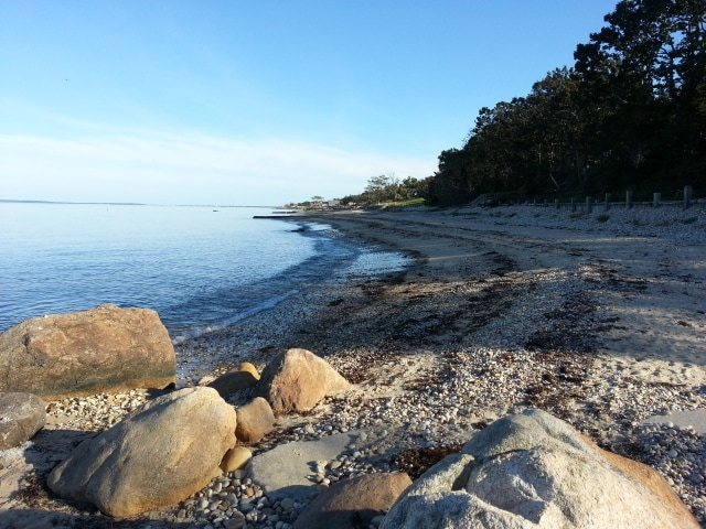Take a walk to the Bay beach 1 block away