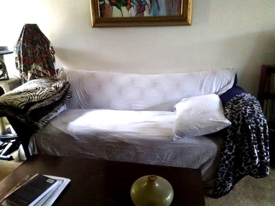 Comfy Couch Near Downtown - San Diego - Wohnung