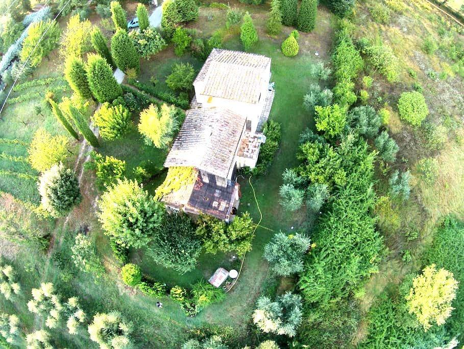 Ulivi Romani, la pace in Sabina. - Poggio Mirteto - Dom