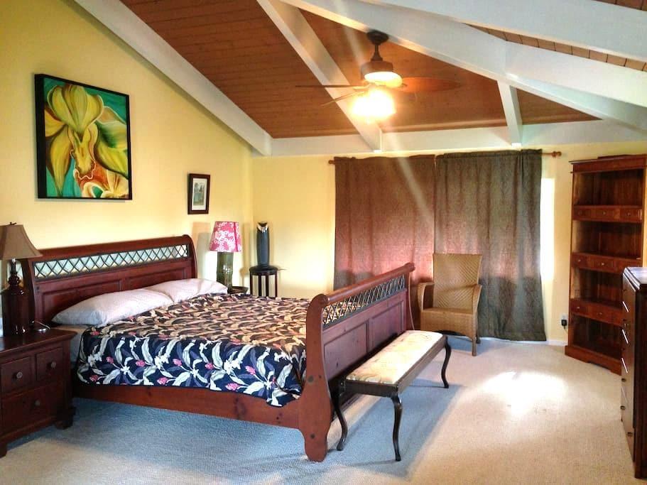 North Shore Kauai Master Bedroom - Kilauea - House