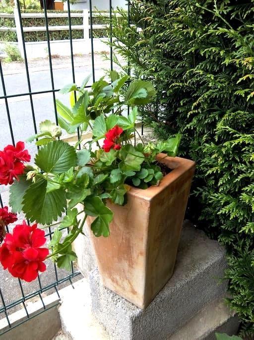 1 BZ dans maison au calme à proximité de Montluçon - Desertines - Rumah