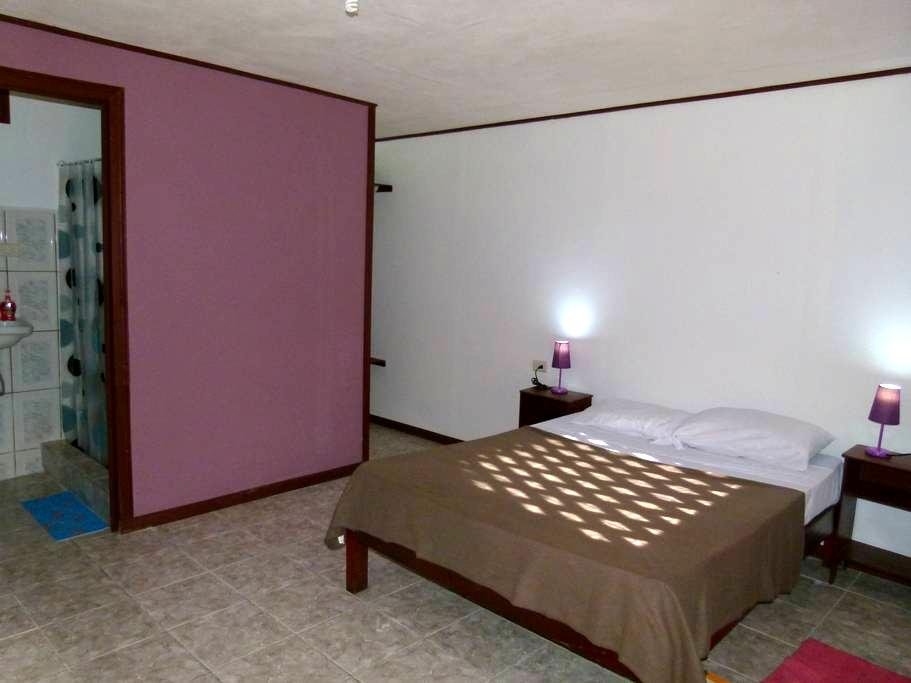 Double Room Aracari Garden Hostel - Tortuguero - Inny