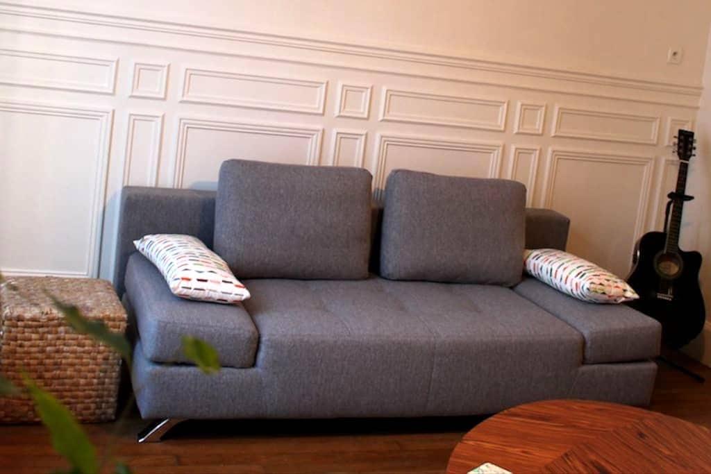 Bel appartement rez-de-jardin dans le centre ville - Auxerre - Huoneisto