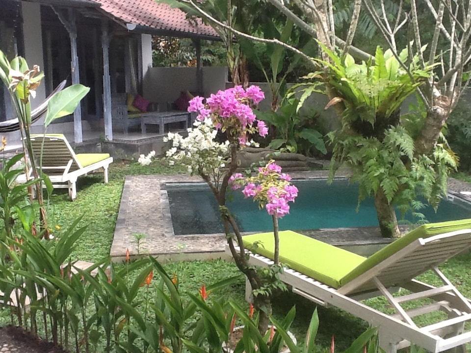 View from Rumah Jambu to Pondok Maya