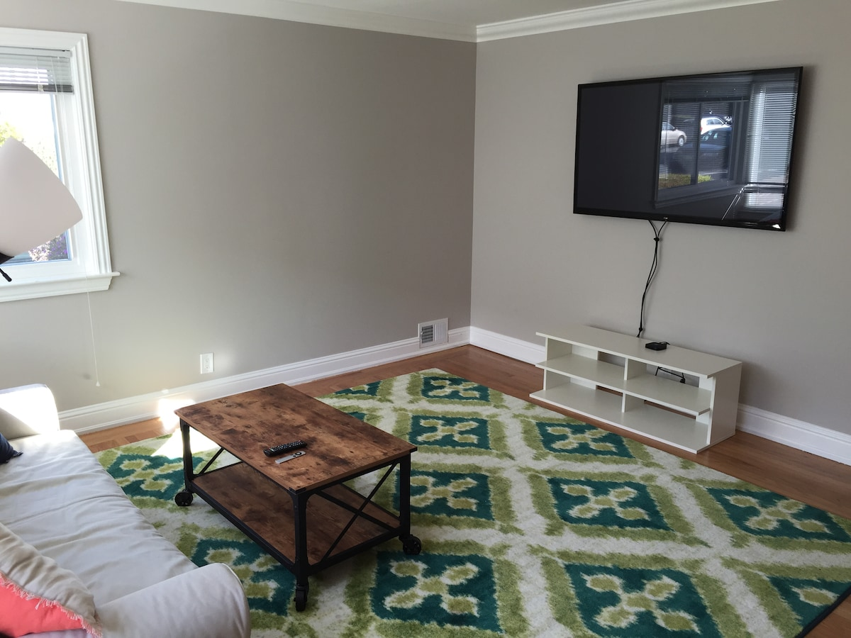 60 inch plasma TV + AppleTV and queen sleeper sofa in the living room.