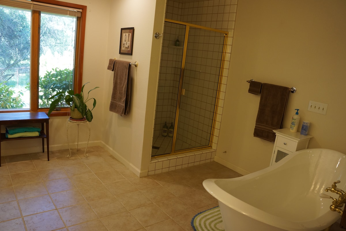 The bathroom has lots of natural light.  We provide natural bath products for your use and also  clean with natural products.
