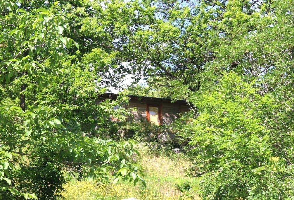 Chalet en Ardeche avec piscine commune - Sablières - Lomamökki