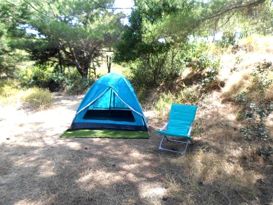 Camping Tent inside the  forest - Theologos - Telt
