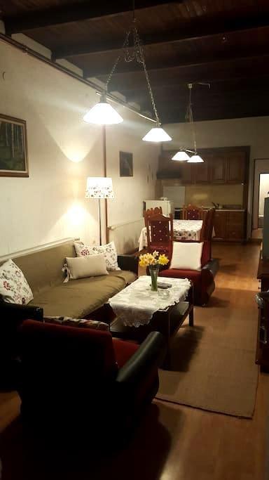 Cosy, rustic, family apartment - Sokobanja
