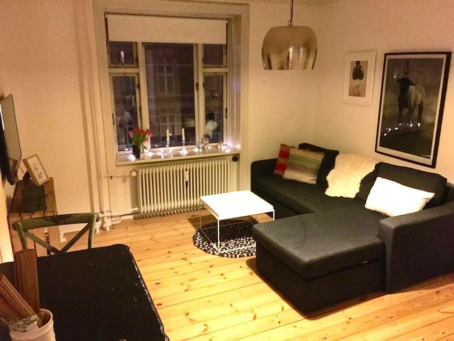 Cozy apartment, perfectly located - københavn V - 公寓