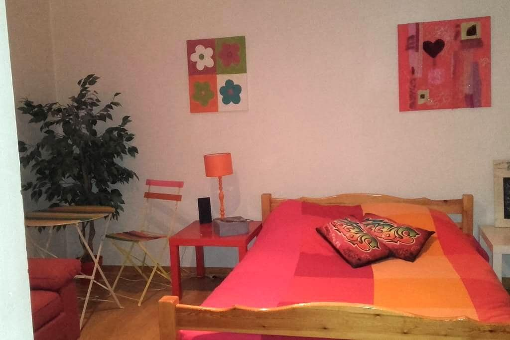grand appartement bourgeois - Villefranche-sur-Saône - Wohnung