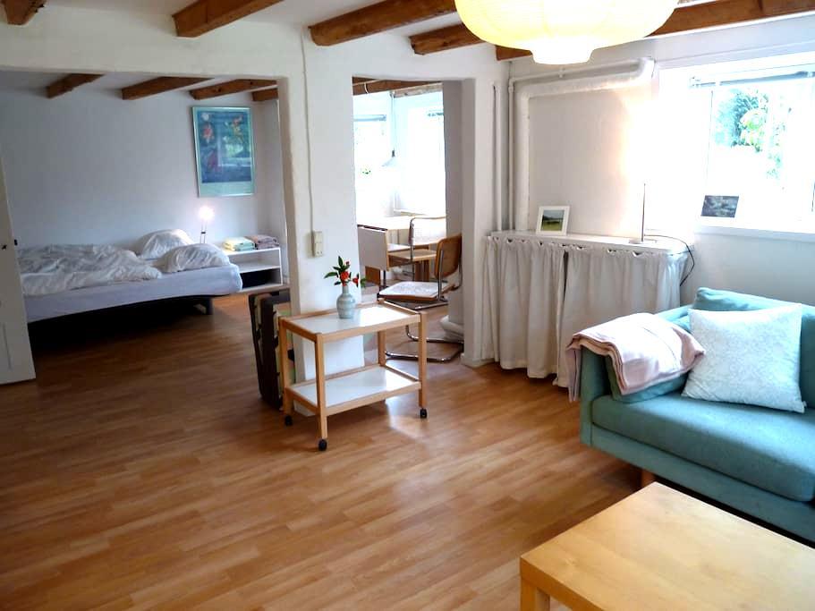 Bright 45 m2 flat (basement), 3 km to city centre - Aarhus - Villa