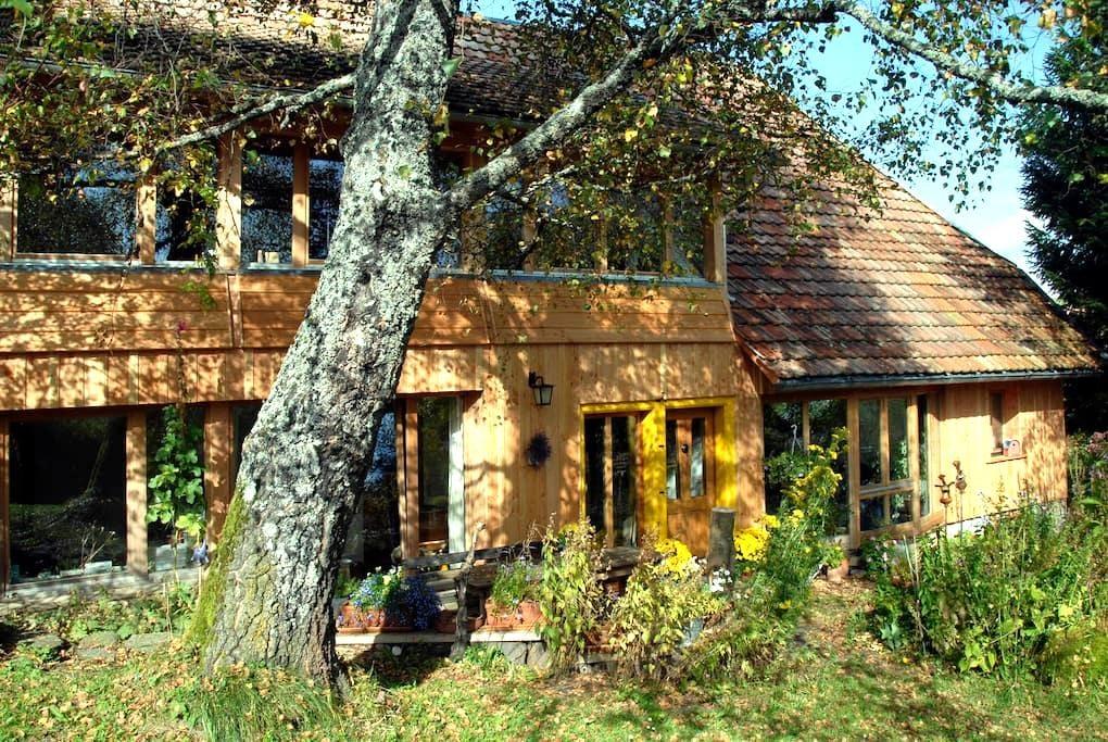 Birkensicht 1 im Schwarzwald Ferienappartement Wes - Herrischried