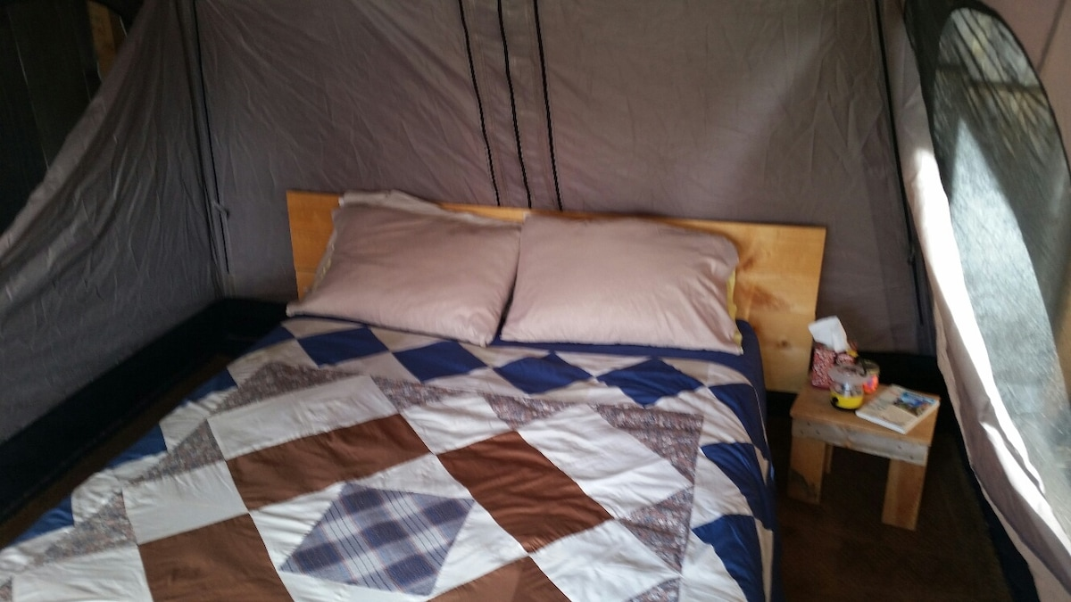 Queen-size bed and box spring with bedding
