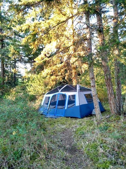 Cozy Hilltop Wall Tent 10'x14' - Deer Harbor - 텐트