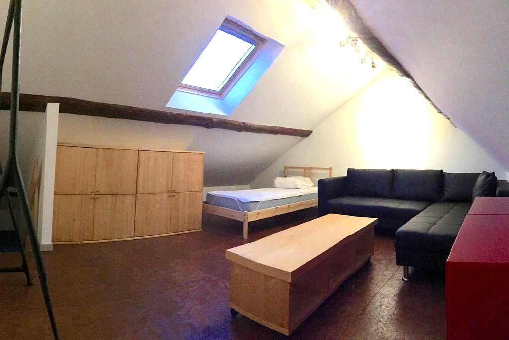 Bed+double sleeping couch-bed - Leuven - Appartement